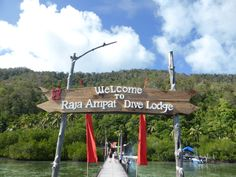 A basic guide - How to get to Raja Ampat - Traveling Honeybird