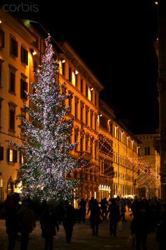 Would love to spend at least one Christmas in Italy (Christmas in Florence, Italy) Christmas In Italy, Christmas Vacation, Italy Vacation, Italy Travel, Winter's Tale, Jingle Bell, December 2014, Florence Italy, City Lights