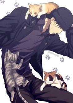 赤井與貓<3