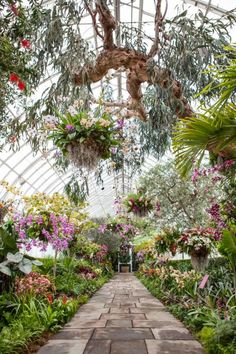 Breath-taking baskets, cylinders and other containers planted with thousands of tropical flowers fill the New York Botanical Garden's Conservatory in its seasonal exhibition, <i>The Orchid Show: Chandeliers</i>.