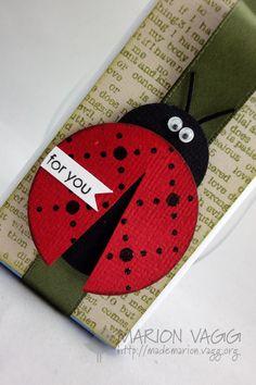 Ladybird Chocolate wrapper detail