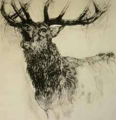 Emerson Mayes - Bellowing Stag
