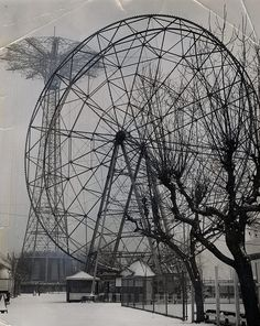 Coney Island - Winter Skeletons. The skeletons of bare trees and closed up rides are juxtaposed in the park's winter landscape. DATE PUBLISHED 1964-02-11. PHOTOGRAPHER Al Robbins