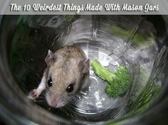 The 10 Weirdest Things Made With Mason Jars