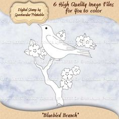 "Bird on Flowered Branch Digital Stamp Set SET INCLUDES:  - 3 Separate Digital Stamps  --- Bird on the flowering branch, approximately 8""x9"" --- Bird by its self, approximately 6""x4"" --- Flowering Branch by its self, approximately 8""x8.5""  - 3 different pieces of word art, including:  ---Happy Birthday  ---Thinking of You ---Thank You . by SpectacularPrintable, $3.00"