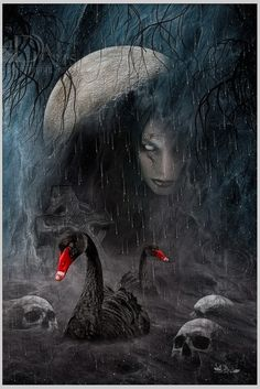 the night from the black swan by greenfeed on deviantART