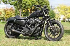 Custom Harley-Davidson XL 883N Iron Sportster   Japan