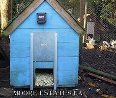28 Best Hen House Images In 2012 Poultry Adorable