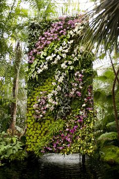 Supposed to be a vertical orchid garden.  I want one!