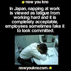 Always knew those Japanese people were smart :)