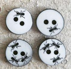 Petits boutons de nacre 11mm, sur la thématique des fourmis ... Ultra canon !!! #supplementsdame, #mercerie, #rennes, #boutons