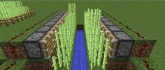 minecraft automatic sugar cane farm image
