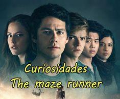 Área de Rebe: 15 #Curiosidades de #TheMazeRunner que tal ves no ...