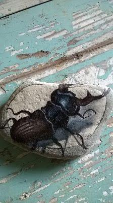 Cristina Gemellaro Collezione insetti dipinti su pietre di mare della Maremma in Toscana.