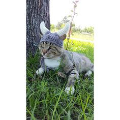 Viking Hat for Cats, Viking Cat Hat, Viking Cat Hats, Cat Clothes,... ($25) ❤ liked on Polyvore featuring accessories and hats