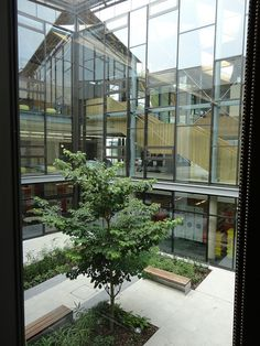 Looking out onto landscaped area, University of Exeter Maths Centres, News Space, Learning Spaces, Classroom Design, Exeter, New Builds, Photo Library, Case Study, Wealth