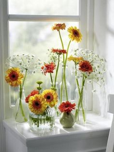 Simple and elegant: contrasting hights of gerbera flowers in clear vases Simple Flowers, White Flowers, Beautiful Flowers, Cut Flowers, Fresh Flowers, Simply Beautiful, Colorful Flowers, Vase Centerpieces, Vases Decor