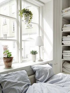 White on white bedroom big window plants fresh bright light shelves pinstripe blue duvet interior decor house home