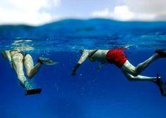Este tour a Cozumel VIP comienza con transportación terrestre desde Cancún, en la que recibirás un box lunch con desayuno ligero y bebidas ilimitadas hasta llegar a Playa del Carmen para abordar el ferry a Cozumel.  Una vez en la isla continúan las emociones y las actividades en Cancún, pues abordarás una lancha con fondo de cristal que te llevará a experimentar un increíble tour de snorkel en Cozumel en tres puntos distintos. ¡Podrás nadar entre coloridos peces y tendrás bebidas ilimitadas…