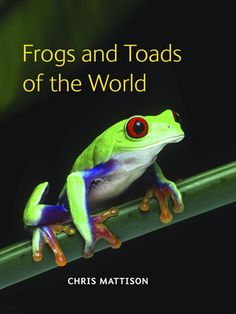 Frogs and Toads of the World: A Book Review by a Fairy Tale Junkie