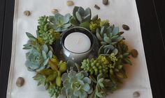Living Succulent Centerpiece by ATouchofSucculents on Etsy