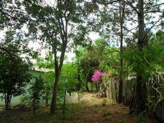 Chácara,  1 dormitório(s),  1 banheiro(s)m² 4. 300 metros de áreanascente em dois pontos da chácarapomar