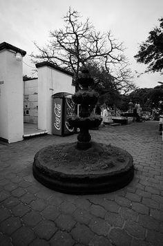 Fuente a la entrada del Panteón Municipal de Coatzacoalcos Veracruz. Lente Voigtlander F5.6 / 12mm