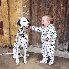 Things that make you go AWW! Like puppies, bunnies, babies, and so on. A place for really cute pictures and videos! Dogs And Kids, Cute Dogs And Puppies, Baby Dogs, Animals For Kids, Animals And Pets, Nature Animals, Doggies, Cute Funny Animals, Cute Baby Animals