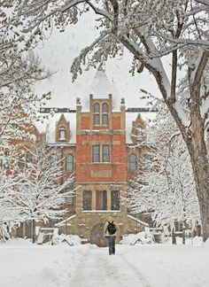 Hale Science Building Snow  CU Boulder Campus