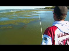 Tips to Find & Catch Fall Bass on Frogs - YouTube