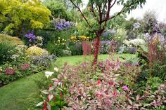 Cottage Gardens - Bing Images