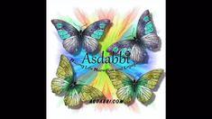 Rainbow Butterfly Adventures