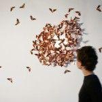 Limited Moths by Mischer'Traxler