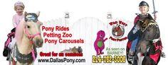 PONY RIDES, THEME ponies, knight pony, my little pony, pink pony RENTAL, DALLAS, TEXAS