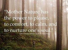 """♥  """"Mother Nature has the power to please, to comfort, to calm, and to nurture one's soul."""" ★"""
