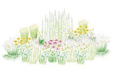 Runsas ja värikäs kukinta on takuuvarma perhosmagneetti. Suosi heleän värisiä... Garden Planning, Garden Inspiration, Home And Garden, World, Art, House, Art Background, Home, Kunst