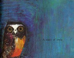 brian wildsmith :: a stare of owls