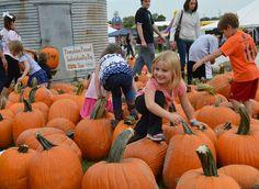 Top 10: Hendricks County Fall Festivals in 2015 - Visit Hendricks County