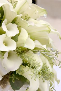 A large arrangement of Seeded eucalyptus and mini calla lilies were accented with touches of sparkle and a detailed ribbon collar to finish off the look.