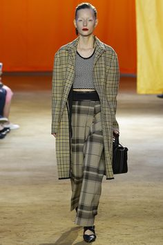 Céline Spring 2016 Ready-to-Wear Fashion Show - Julita Formella