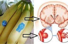 Disfruta de los plátanos y alivia la depresión y los problemas intestinales