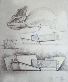 Transformation of the living creatures in the elements of the architecture Sketchbook Architecture, Biomimicry Architecture, Concept Models Architecture, Form Architecture, Conceptual Architecture, Futuristic Architecture, Airport Design, Industrial Design Sketch, Architectural Section