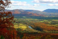 Chasing fall's colors in Virginia's picturesque Shenandoah Valley. #fallcolors #travel #shenandoahvalley
