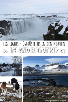 Island Roadtrip - Highlights und Sehenswertes an der Ostküste entlang in den Norden www.gindeslebens.com #Island #Roadtrip #Winter #Route #Highlights #Tipps #Ostküste #Osten #Norden #Godafoss #Dettifoss #Selfoss #Dimmurborgir #Akureyri Roadtrip Europa, Reisen In Europa, Far Away, Volcano, Iceland, Gin, Remote, Places To Go, Road Trip