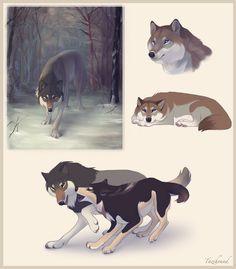 Wolves by Tazihound.deviantart.com on @deviantART