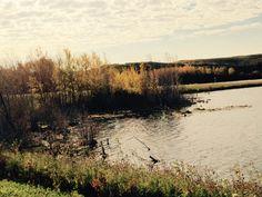 North Saskatchewan
