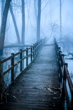 Misty Swamp Bridge [Credit - / Frozen Swamp by Marlon Sardini - Montepulciano - Toscane - Italy] Beautiful World, Beautiful Places, Beautiful Pictures, Look Dark, All Nature, Pathways, Belle Photo, Wonders Of The World, Enchanted