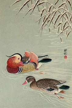 Japanese art, Mandarin Ducks in Snow FINE ART PRINT, japanese animal birds art prints, posters, paintings, woodblock prints, wall home decor