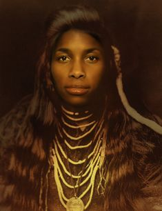 ArtistToni Scott, .  Black Indians in the United States - created by Ametrine – Shattering The Matrix