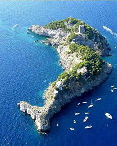 Isla delfin.#Italia@**